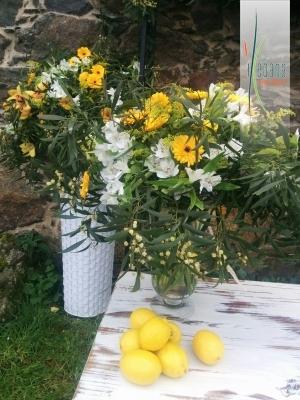 Centro con limones
